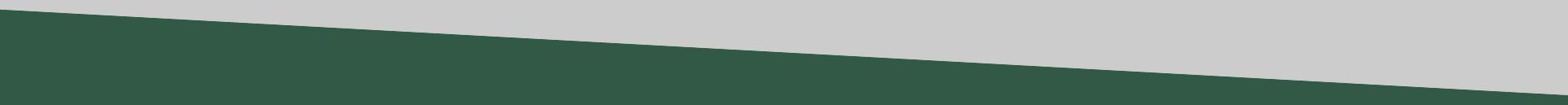 detalhe-layout-footer-frota
