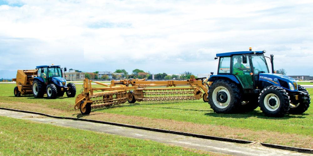 manutencao-gramados