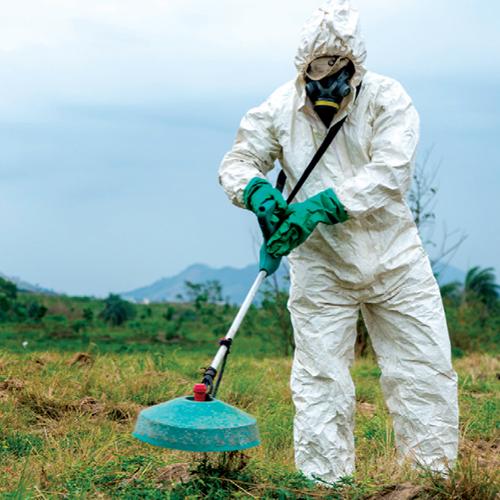 servicos-reflorestamento-capina-quimica